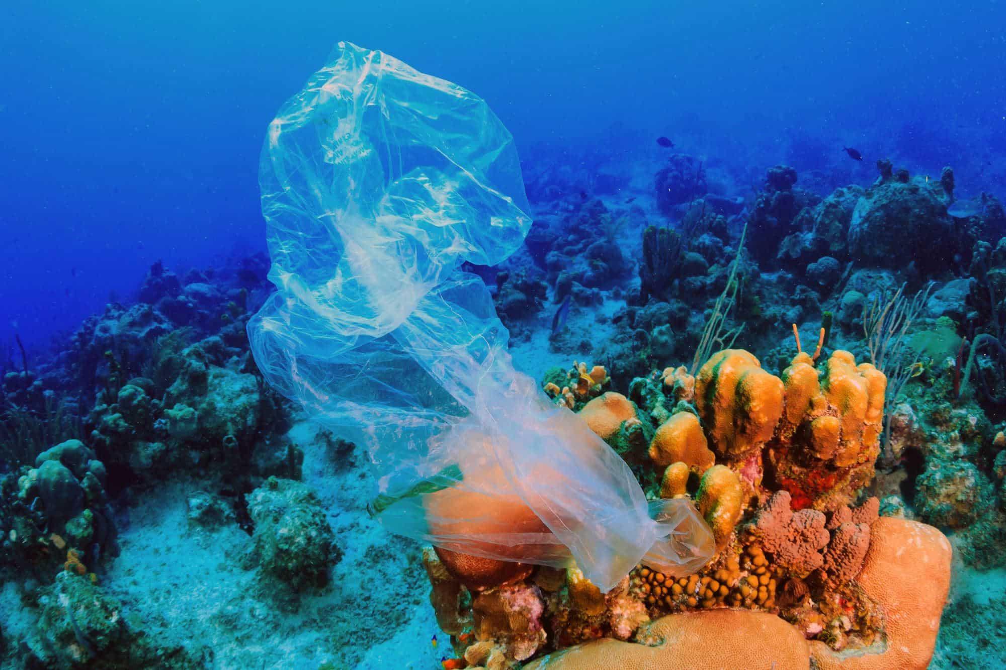 plastic-bag-biodegradable